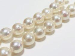 売,栄区,真珠