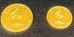 藤枝市,高価買取,金貨